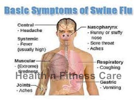 Swine Flu Symptoms And Prevention